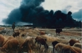 """Untitled (Baku, Azerbaijan), from the series """"Soviet Pollution"""", 1993, color photography, 47 x 61 cm"""