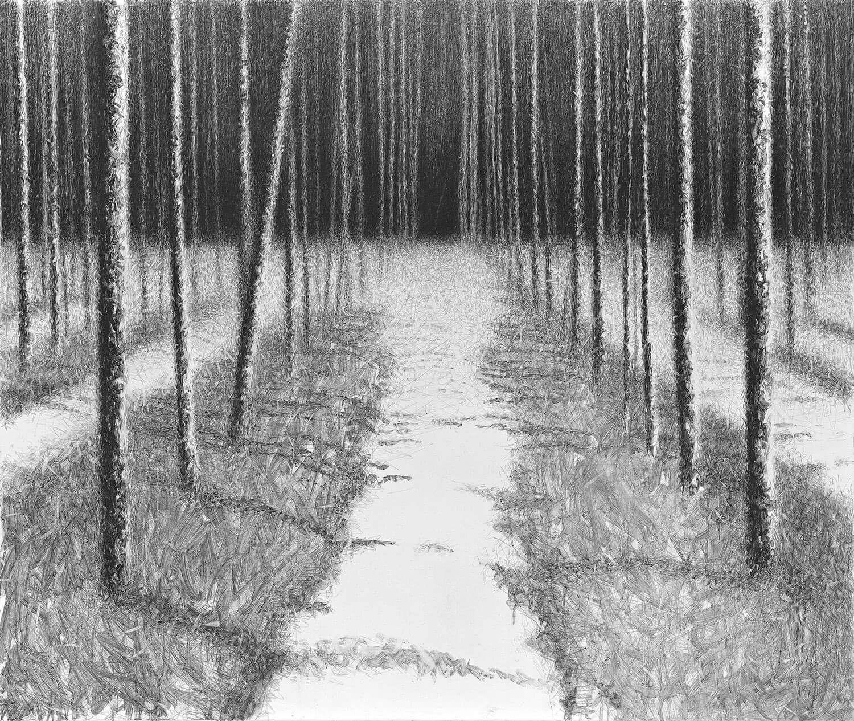 Danja Akulin, o. T., 2010, Graphit auf Leinwand, 146 x 172 cm