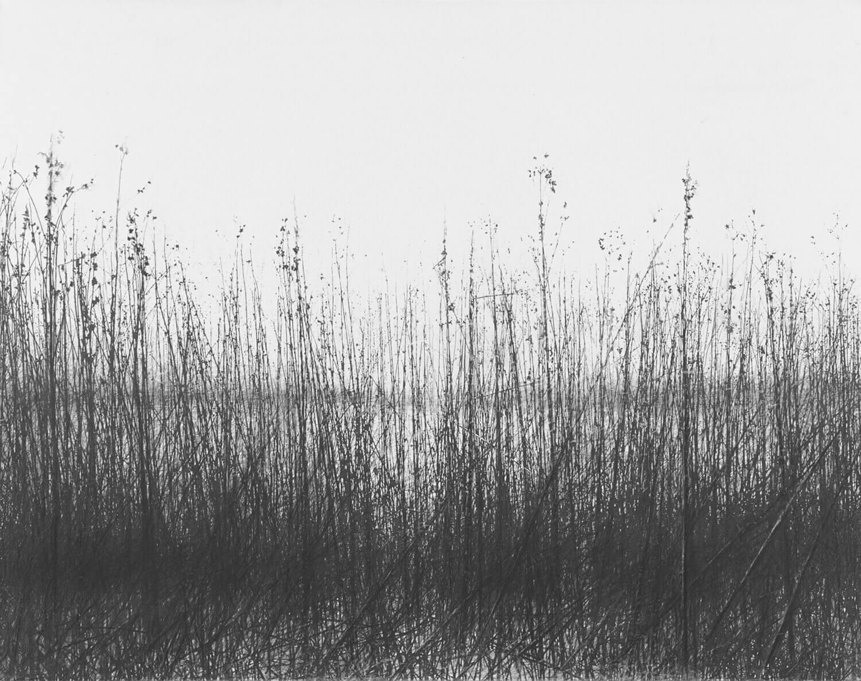 Danja Akulin, o. T., 2014, Graphit auf Papier, aufgezogen auf Leinwand, 64 x 81 cm