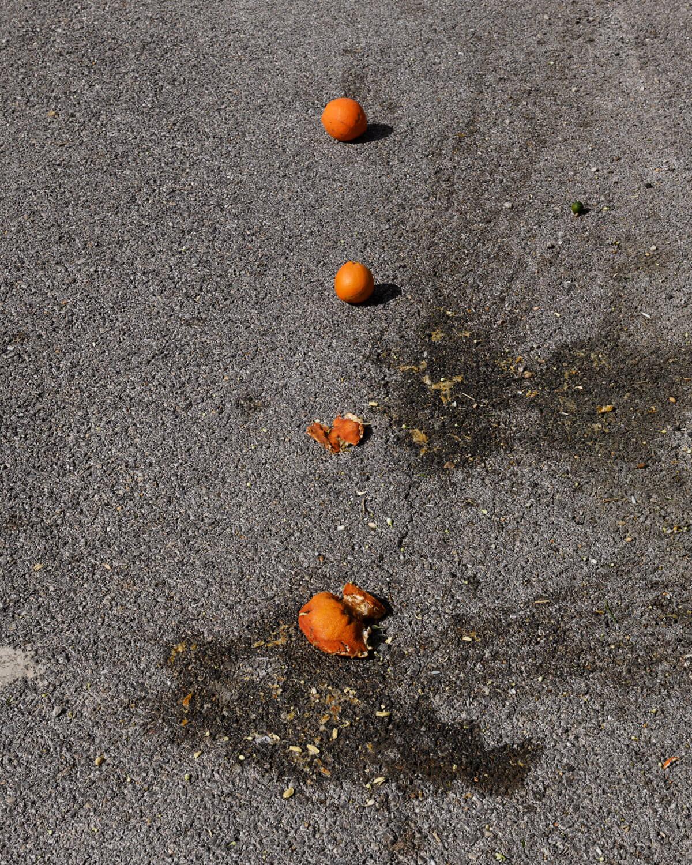 Göran Gnaudschun, Vier Apfelsinen (aus: Das bessere Leben, Murcia), 2020, Pigmentdruck, Motiv: 26,6 x 21,3 cm, Blatt: 32,9 x 23,1 cm