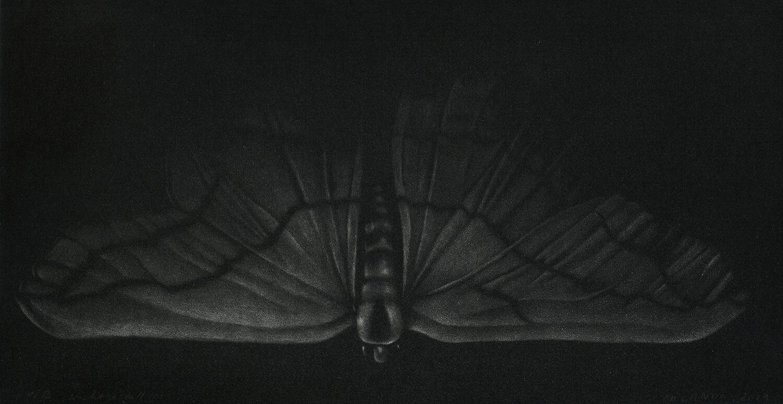 ORLANDO, Nachtgestalt II, 2019, Radierung (Schabaquatinta), 15 x 29 cm