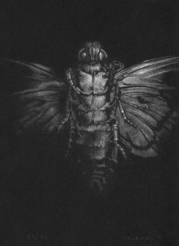 ORLANDO, Nachtgestalt V, 2019, Radierung (Mezzotinto), 21 x 15